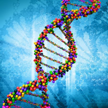What is genomics?