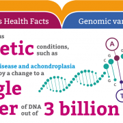 Genomics fun facts: Genomic variation